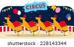 Circus Llama Number With Circus ...