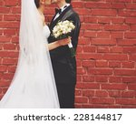 wedding couple together on... | Shutterstock . vector #228144817