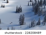 Three Backcountry Skiers