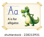 Alligator Flashcard Poster Wit...