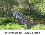 walking trails after the rain... | Shutterstock . vector #228217855