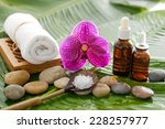 health spa  | Shutterstock . vector #228257977
