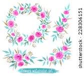 vector flowers set. colorful... | Shutterstock .eps vector #228306151