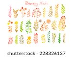 set of colorful autumn leaves.... | Shutterstock .eps vector #228326137