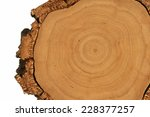 Tree Cross Section With Thick...