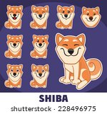 shiba set | Shutterstock .eps vector #228496975