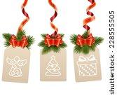 vector christmas label | Shutterstock .eps vector #228555505