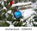blue ornament hanging on tree outside - stock photo
