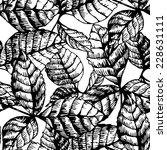 vector black and white seamless ... | Shutterstock .eps vector #228631111
