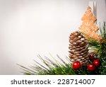 christmas decoration | Shutterstock . vector #228714007