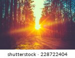 forest road under sunset... | Shutterstock . vector #228722404