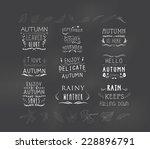 set of autumn themed retro... | Shutterstock .eps vector #228896791
