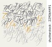 alphabet letters  uppercase ... | Shutterstock .eps vector #229064491