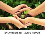 two hands holding together... | Shutterstock . vector #229178905