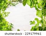 green fresh herbs mix on white... | Shutterstock . vector #229179961