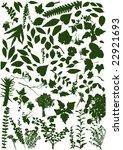 leaf   big vector collection | Shutterstock .eps vector #22921693