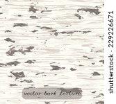 vector texture with birch bark.   Shutterstock .eps vector #229226671
