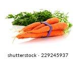 fresh carrots studio isolated... | Shutterstock . vector #229245937