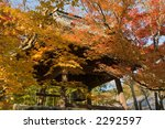 autumn leaves | Shutterstock . vector #2292597