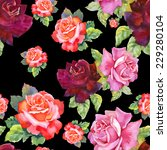 watercolor red and pink roses...   Shutterstock .eps vector #229280104