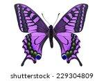 Beautiful Purple Butterfly...