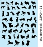 Stock vector fifty dogs silhouette 22934431