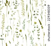 Vector seamless pattern with silhouettes of flowers and grass, drawing by watercolor, hand drawn floral illustration, herbal ornament