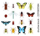 insects colored decorative... | Shutterstock .eps vector #229385584