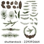 big  set with pine spruce... | Shutterstock .eps vector #229392664