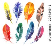 watercolor feather set. hand... | Shutterstock .eps vector #229434541