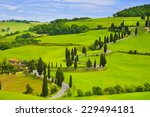 winding road in the fields of... | Shutterstock . vector #229494181