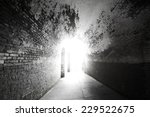 the light at the end | Shutterstock . vector #229522675