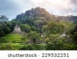 ruins of palenque  maya city in ... | Shutterstock . vector #229532251