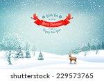 winter christmas landscape... | Shutterstock . vector #229573765