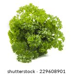bunch of parsley on white... | Shutterstock . vector #229608901
