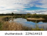 Landscape With River And Cloud...