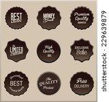 elegant label set | Shutterstock .eps vector #229639879