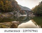 devil's bridge near dyadovtsi... | Shutterstock . vector #229707961