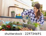 Woman Planting Container On...