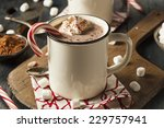 homemade peppermint hot... | Shutterstock . vector #229757941