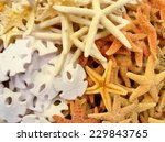 pile of colored shells... | Shutterstock . vector #229843765