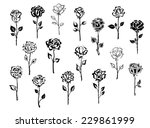 Stock vector black and white collection of rose icons in sketch style each one showing a different single long 229861999