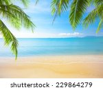 palm and tropical beach | Shutterstock . vector #229864279