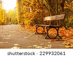 Empty Bench In The Autumnal...