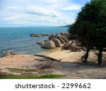 rocky beach and tree along the... | Shutterstock . vector #2299662