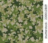 seamless camouflage pattern | Shutterstock . vector #230012809