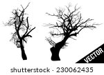 Dead Trees On White Background...