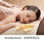 beauty  health  holidays ...   Shutterstock . vector #230095621
