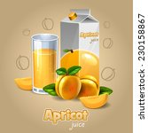 apricot juice | Shutterstock .eps vector #230158867