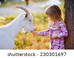Cute Little Kid Feeding A Goat...
